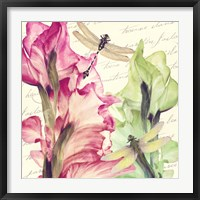 Dragonfly Morning II Framed Print