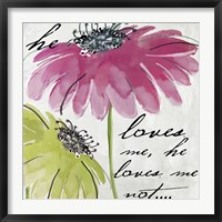 Daisy Morning II Framed Print