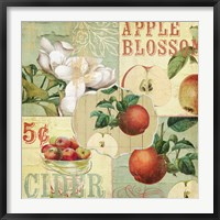 Apple Blossoms I Framed Print
