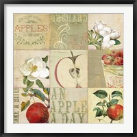 Apple Blossoms III Framed Print