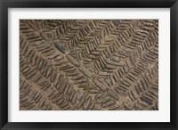 Framed Spain, Navarre, Muruzabal, Cobblestone Pattern