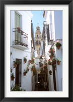 Framed Calleja de las Flores (Flower Alley), Spain