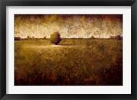 Framed Evergreen III