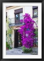 Framed Spain, Granada The entrance of Hotel America