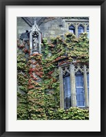 Framed Halls of Ivy, Oxford University, England