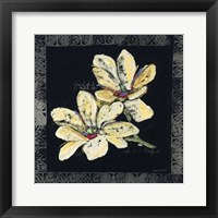 Beauty & More III Framed Print