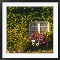 Framed Cottage, Devon, England