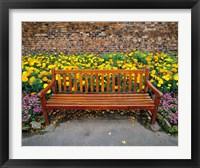 Framed England, Northumberland, Hexham, Park bench