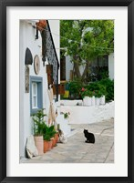 Framed Street View with Black Cat, Manolates, Samos, Aegean Islands, Greece