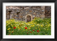 Framed Old building and wildflowers, Island of Spinalonga, Crete, Greece