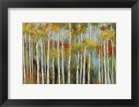 Framed Young Forest III