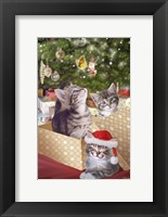 Framed Kittens and Butterfly Under The Tree