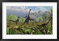 Framed Velociraptor Dinosaurs Attack a Camarasaurus