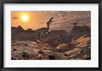 A Pack of Carnivorous Velociraptors from the Cretaceous Period Framed Print