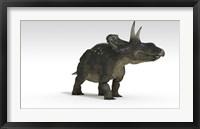 Triceratops Dinosaur 2 Framed Print