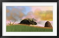 Triceratops Walking across a Grassy Field 3 Framed Print