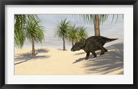 Triceratops Walking in a Tropical Environment 2 Framed Print