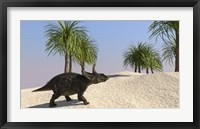 Framed Triceratops Walking in a Tropical Environment 3