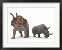 An adult Triceratops Compared to a modern adult White Rhinoceros Framed Print