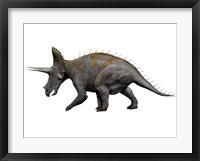Triceratops Dinosaur 1 Framed Print