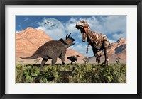 Prehistoric battle between a Triceratops and Tyrannosaurus Rex Framed Print