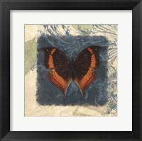 Swirl Butterfly II Framed Print