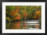 Framed Hint of Fall