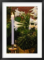 Framed Easter Flowers