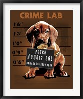 Crime Lab Framed Print