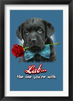 Lab the One You're With Framed Print