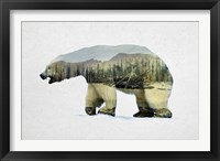Framed Arctic Polar Bear