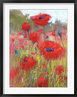 Framed In the Poppy Field