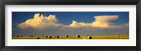 Framed Prairie Haybales