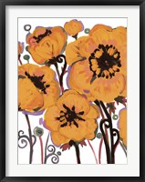 Orange Blooms Framed Print