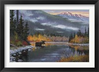 Framed South Fork Moose