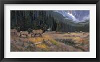Framed Great South Fork