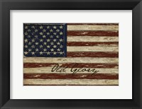 Framed Old Glory