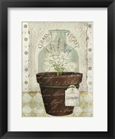 Framed Herb Pot Lavender