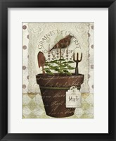 Herb Pot Mint Framed Print