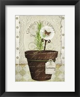 Herb Pots Rosemary Framed Print