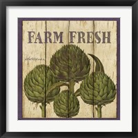 Framed Farm Fresh Artichoke