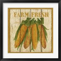 Framed Farm Fresh Corn