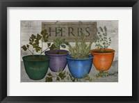 Framed Herbs