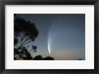 Framed Comet McNaught P1