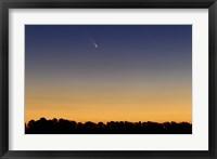 Framed Comet Panstarrs III