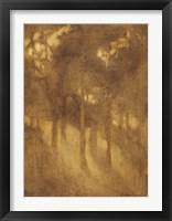 Framed Among The Trees