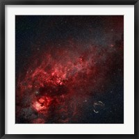 Framed Constellation Cygnus with multiple nebulae visible