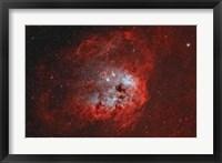 Framed Tadpole Nebula II