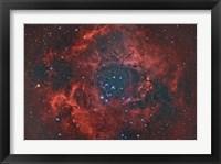Framed Rosette Nebula I