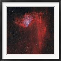 Framed Flaming Star Nebula I